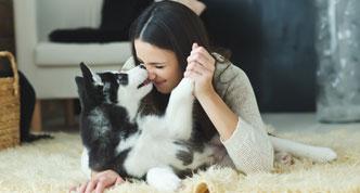 Pets and HVAC