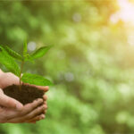 Benefits of Using Bioheat® Fuel
